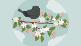 Как создать иллюстрацию скворца на ветке в Adobe Illustrator