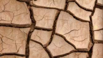 Подборка текстур сухой земли с трещинами